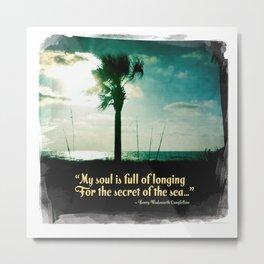 Secret of the sea Metal Print