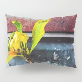 yellow euphorbia milii plant with old lusty metal background Pillow Sham