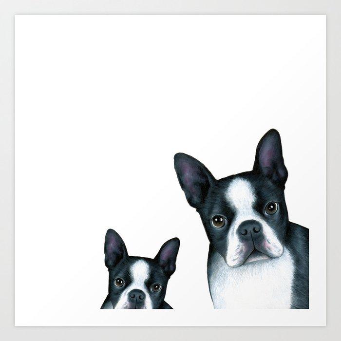 Boston Terrier Dogs black and white Art Print