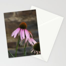 pink cone - echinacea flower Stationery Cards