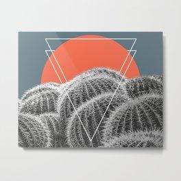 Barrel Cacti Abstract Metal Print