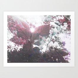 Abstract Botanical Art Rasberry Leaf sunset, raspberry Art Print