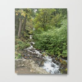 Columbia River Gorge National Scenic Area ( wahkeena) Metal Print