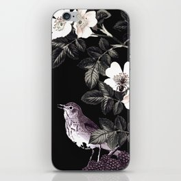Blackberry Spring Garden Night - Birds and Bees on Black iPhone Skin