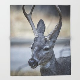 Buck with Two Pronged Antlers Throw Blanket