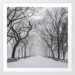 Central Park during Blizzard of 2015 Art Print