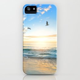 Blue Sky with Birds iPhone Case