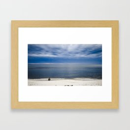 Blue-Bill Ducks Beach Framed Art Print