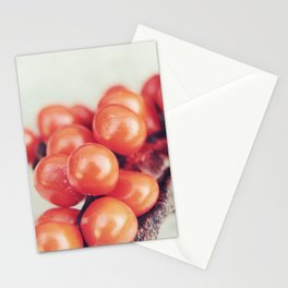Seed Pods II Stationery Cards