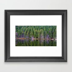 forest above and below Framed Art Print