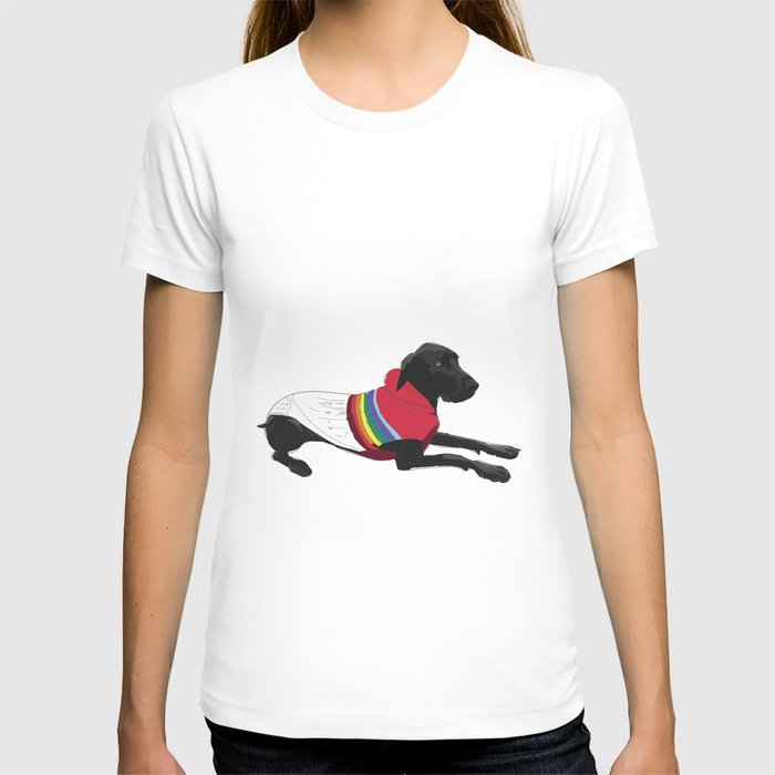 Black Great Dane with a sweater T-shirt