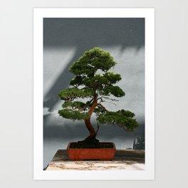 Trees #5 Art Print