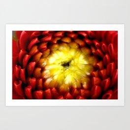 Fibonacci Fury Art Print