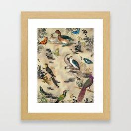 Old Vintage animals n1 print Framed Art Print