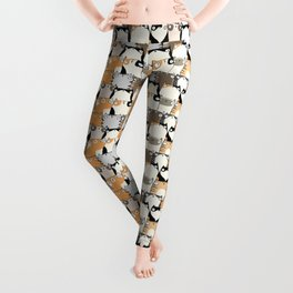 Staring Cats Leggings