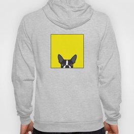 Boston Terrier Yellow Hoody
