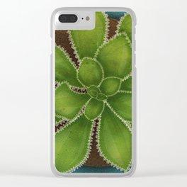 Succulent in pot Clear iPhone Case