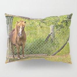 Portrait of a miniature horse mare Pillow Sham