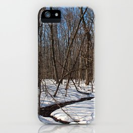 Frozen Freedom -horizontal iPhone Case