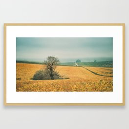 The field in autumn Framed Art Print