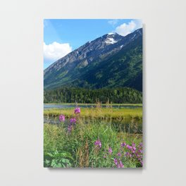July at Tern Lake - II Metal Print