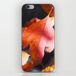 Autumn Red iPhone Skin