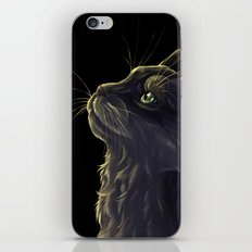 Cat and the light  iPhone & iPod Skin