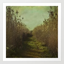 The path into the unknown Art Print