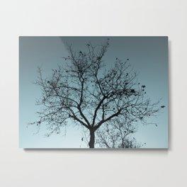 Natural shapes #3 Metal Print