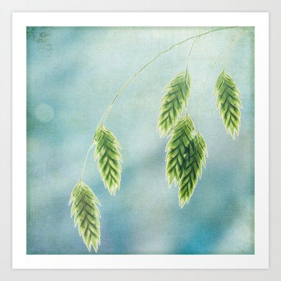 oat grass Art Print