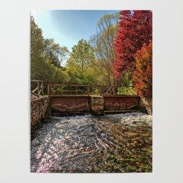 Fall Foliage Along River Poster