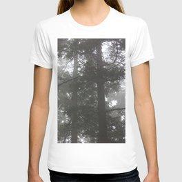 Foggy trees T-shirt