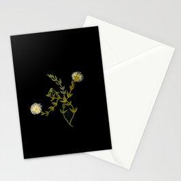 Mesembryanthemum Splendens Mary Delany Delicate Paper Flower Collage Black Background Floral Botanic Stationery Cards