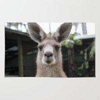 kangaroo Area & Throw Rugs featuring Queensland Kangaroo by Rachel J
