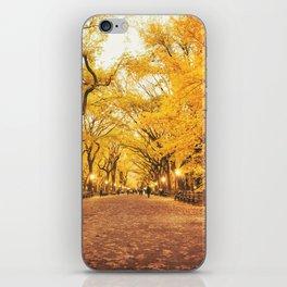 New York City Autumn iPhone Skin