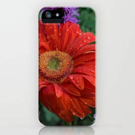 Colorful Wildflowers iPhone Case