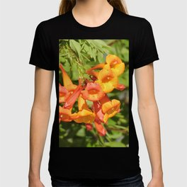 Natural Brass Blowing in the Breeze T-shirt