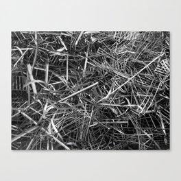 metal line Canvas Print
