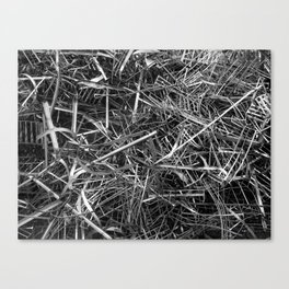 metal line Canvas Print