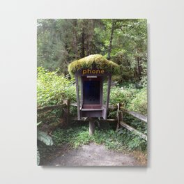 Phone Booth in Olympia National Park Metal Print