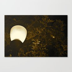Luminescent  Canvas Print