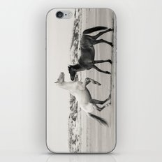 Wild Horses 5 - Black and White iPhone & iPod Skin