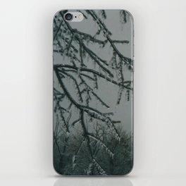 Trees encased in ice iPhone Skin