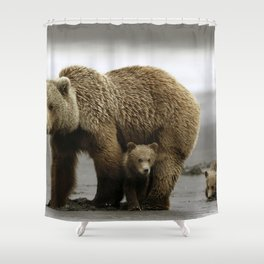 Stunning Grown Grizzly Bear Mother On Stroll With Super Lovely Little Baby Cubs Ultra High Res Shower Curtain