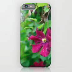 purple clematis flower iPhone 6s Slim Case