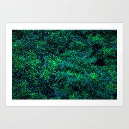 Odaiba Overgrowth Art Print