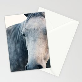 Close Up Stationery Cards