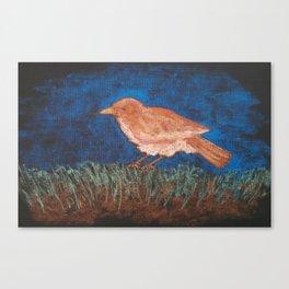 Bird Study Canvas Print