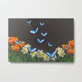Daffodils Flowers blue Morph Butterfly - black background Metal Print