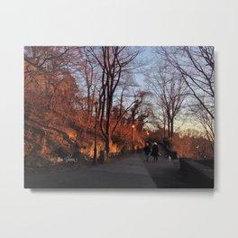 Stroll in the Park Metal Print